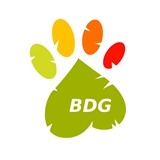 BDG Beagles